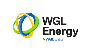 WGL_Energy_RGB resized for web.png